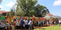 An eventful day at the DHPS: Open Day & DHPS Summer Celebrations