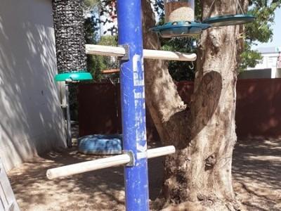 Vorschule: Vogelstation