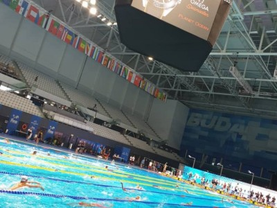 FINA Swimming Competition