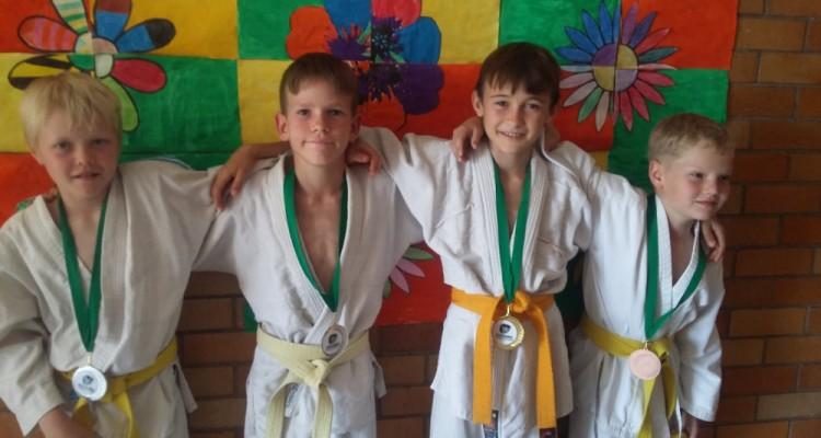 DHPS-Judoka räumen ab